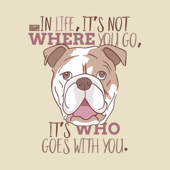 "graphic art image of a bulldog, the school's mascot, with the saying ""In life, it's not where you go, it's who goes with you."""